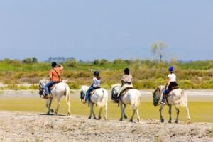 Reiter in Südfrankreich, Camargue